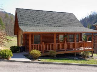 MOOSE INN - Sevierville vacation rentals