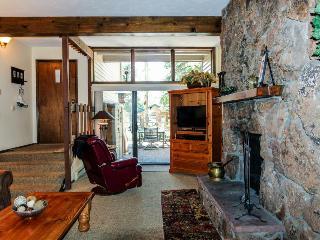 Beaver Creek West Mountain Condo - Avon vacation rentals