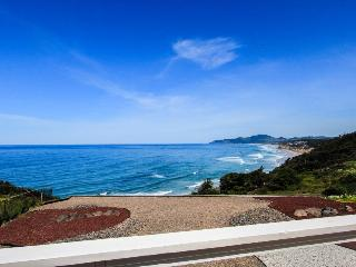 Huge, elegant, dog-friendly oceanfront estate w/ private hot tub on 1/2 acre! - Newport vacation rentals