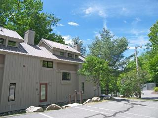 Clearbrook Resort 6-2 - Professionally Managed by Loon Reservation Service - Lincoln vacation rentals