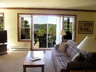 Mont Tremblant Mountain Side Condo - Mont Tremblant vacation rentals