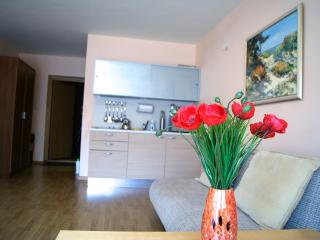 Apartment 80m from the sea beach - Palanga vacation rentals