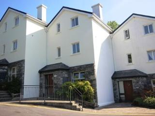 No 7 John Darcy Court - 3 bed townhouse, parking,large patio area, town centre on your doorstep - Clifden vacation rentals