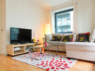 13th Floor Riverview 2Bed/2Bath Flat @ CanaryWharf - London vacation rentals