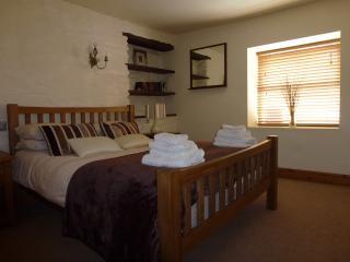 Comfortable Condo with Internet Access and Television - Cilgerran vacation rentals