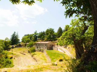 Agriturismo Le Selve di Vallolmo (Lavanda 3) - Pratovecchio vacation rentals