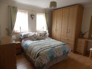 Romantic 1 bedroom Condo in Aberdare - Aberdare vacation rentals