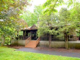 Cedar Lodge - Oakland vacation rentals