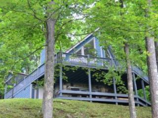 Adlerskron - Image 1 - McHenry - rentals
