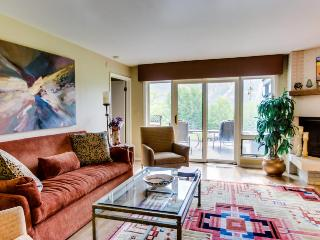 Cozy, warm condo with amazing mountain and golf course views - Ketchum vacation rentals