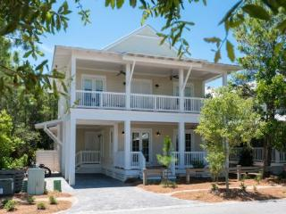 1312 Western Lake Drive - Watercolor vacation rentals