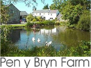 Pen Y Bryn Farmhouse - Betws yn Rhos vacation rentals