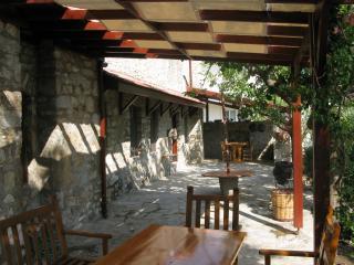 Gorgeous 5 bedroom Mesudiye Villa with Internet Access - Mesudiye vacation rentals
