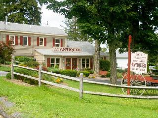 Millard's Nook - 1BR/1BA Cozy Historic Hideaway Near Finger Lakes - Moravia vacation rentals