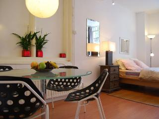 Charming Condo with Internet Access and Stove - Amsterdam vacation rentals