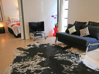 The Rabbit Street Apartment - Holland (Netherlands) vacation rentals