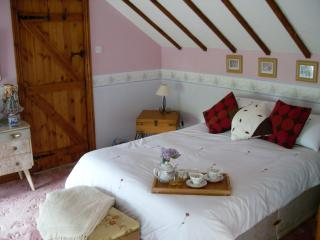 Acorn Hedge Cottage, spacious, comfortable retreat - Ammanford vacation rentals