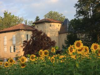 Bright 6 bedroom Latoue Chateau with Internet Access - Latoue vacation rentals