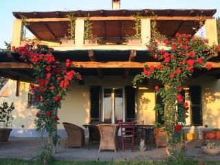 House with terrace, in Maremma, close to the sea - Manciano vacation rentals