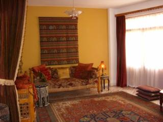 East Bank Luxury Apartment includes breakfast - Luxor vacation rentals