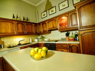 Nice Condo with Internet Access and Dishwasher - Corfu Town vacation rentals