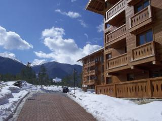 Perfect Condo with Internet Access and Satellite Or Cable TV - Razlog vacation rentals