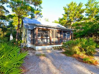 Palmetto Cottage - Seagrove Beach vacation rentals