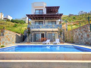 Perfect 4 bedroom Villa in Kadikalesi - Kadikalesi vacation rentals