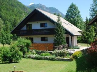 Holiday House Trata - Apt 1 - Spacious apt (95 m2) - Kranjska Gora vacation rentals