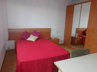 Double bedroom flat + 2 balconies + WiFI - Valencia vacation rentals