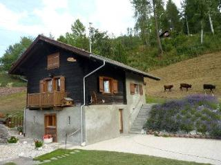 Cozy 2 bedroom Chalet in Nax - Nax vacation rentals