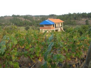 Quinta do Mineiro ( Serra da Estrela ) - Guarda vacation rentals
