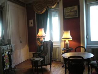 Un appartement de style - Villeurbanne vacation rentals