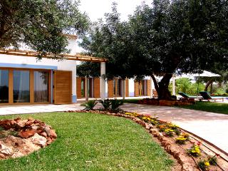 3 bedroom Villa with Internet Access in Silves - Silves vacation rentals