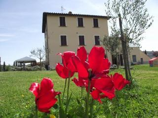 Bright 6 bedroom Chiusi Bed and Breakfast with Internet Access - Chiusi vacation rentals
