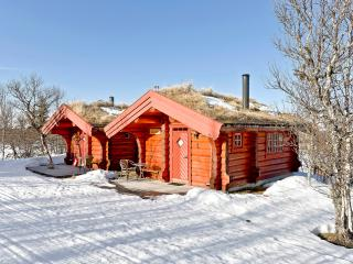 Perfect 1 bedroom Venabygd Cabin with Internet Access - Venabygd vacation rentals