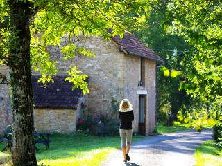 Ideal for Groups sleeps 30,Pool Dordogne,Fishing , - Aubas vacation rentals