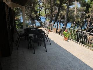 Charming Apartment offering Sea View & Beach ! - Jelsa vacation rentals