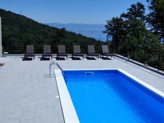 Villa Bianca - A Luxury Property close to Opatija - Opatija vacation rentals