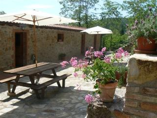 la locanda del minatore-Stella - Massa Marittima vacation rentals