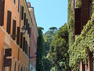 Feline House - Rome vacation rentals