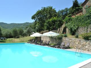 Villa il Castellaccio in Greve in Chianti - flat 1 - Lucolena vacation rentals