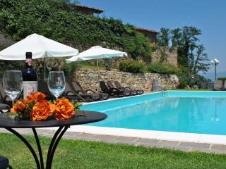 Villa il Castellaccio in Greve in Chianti - flat 4 - Lucolena vacation rentals