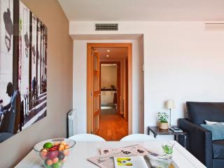 Lovely apartment Eixample wifi - Barcelona vacation rentals