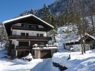 3 bedroom Condo with Internet Access in Gosau - Gosau vacation rentals