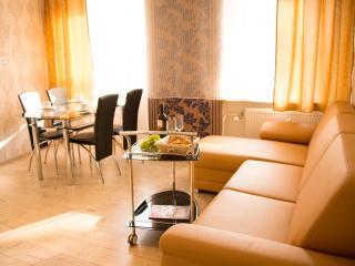 Deluxe Apartments Karlovy Vary - Marianske Lazne vacation rentals