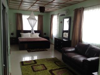 1 bedroom Apartment with Internet Access in Freetown - Freetown vacation rentals