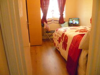 Economy 1 bedroom flat in East London, 15 minutes from Zone 1 - London vacation rentals