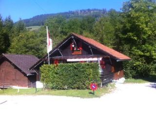 Nice Chalet with Internet Access and Swing Set - Charmey vacation rentals