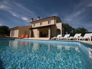 Mediterranean Villa Andretti - Pazin vacation rentals